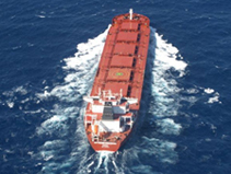 SERVICES FOR MARITIME INDUSTRY